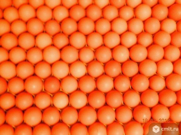 Инкубационное яйцо несушки Браун Ник.. Фото 1.