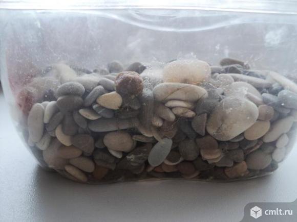 Камни для аквариума. Фото 3.