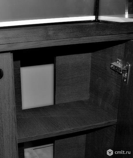 Новый Аквариум телевизор 450-500 л. Фото 4.
