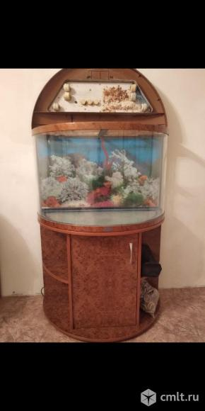 Продам аквариум. Фото 1.
