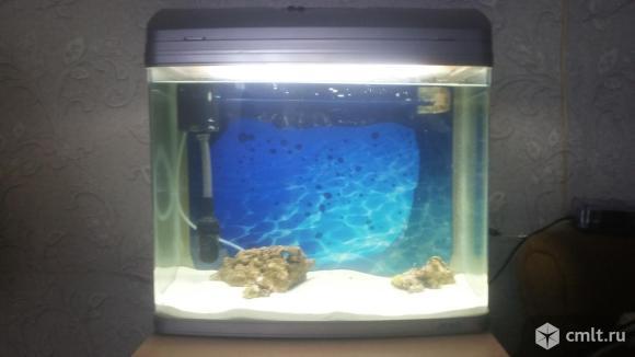 Морской Аквариум. Фото 1.