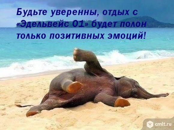 Автобусом к морю! Пляжи Голубицкой, Анапы, Кабардинки. Фото 1.