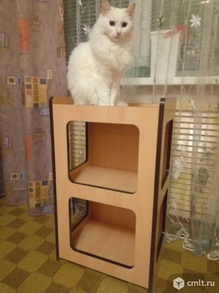 Домик для кошек. Фото 1.