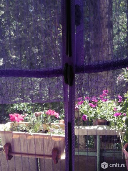 Дверная антимоскитная сетка на магнитах. Фото 1.