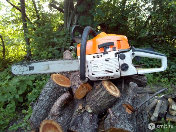 Опиловку крон деревьев, распиливание сухостоя. Фото 1.