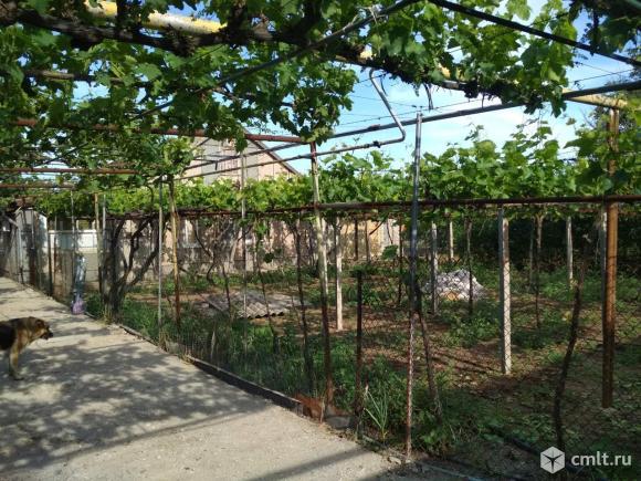 Продается: дом 58 м2 на участке 32 сот.. Фото 7.