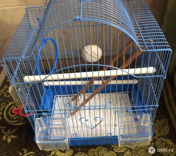 Продаю клетку для птиц. Фото 1.