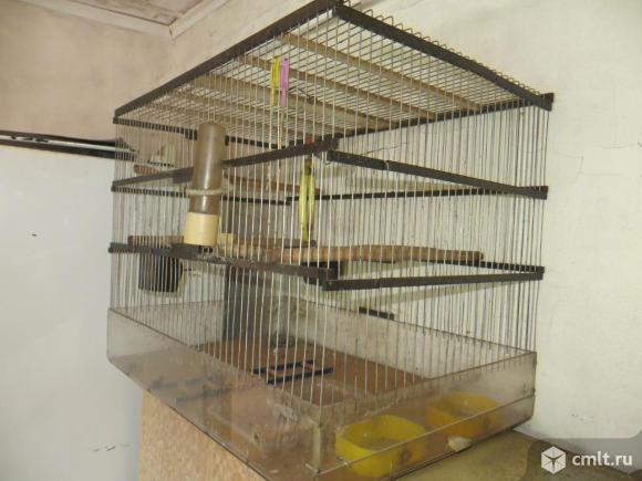 Клетка для попугая б/у. Фото 2.