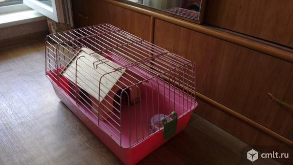 Продам клетку для животного. Фото 1.