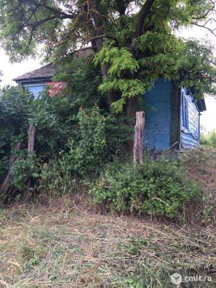 Дом на берегу реки Дон, р-н Верхний Мамон. Фото 11.