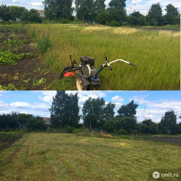 Покос (скос) травы ,стрижка газона в Воронеже. Фото 11.