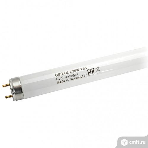 Лампа L36W/765 Osram T8 36 Вт - свет холодный. Фото 1.