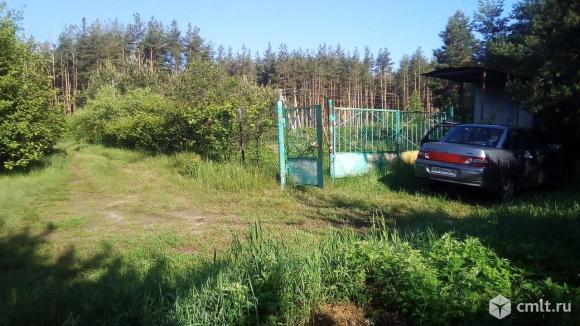 Продам ухоженный участок 9 соток в СНТ Ромашка под Рамонью. Фото 1.