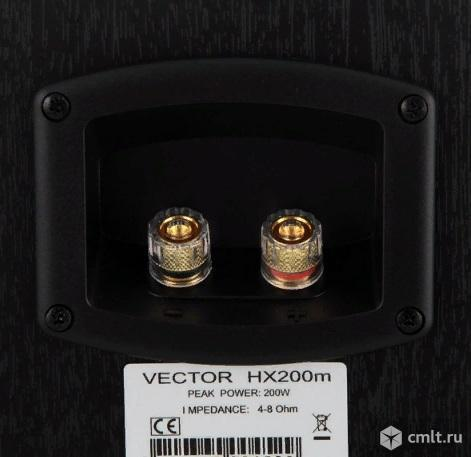 Новые, гарантия 100 Вт колонки Vector HX200m. Фото 2.