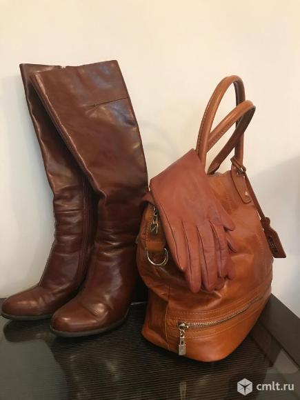 Сапоги (еврозима)+ сумка + перчатки. Фото 1.