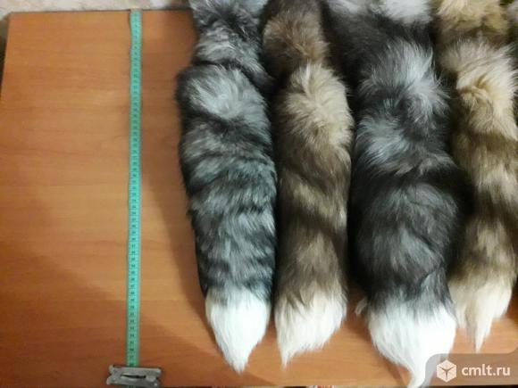 Продам натуральные меховые хвосты,лиса,писец.. Фото 1.