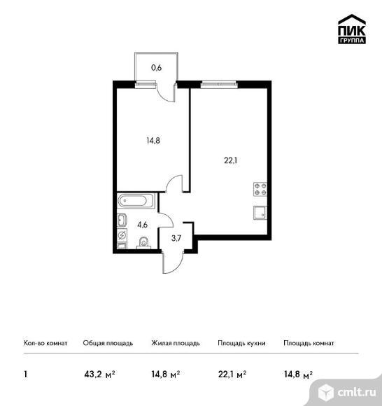 1-комнатная квартира 43,2 кв.м. Фото 1.