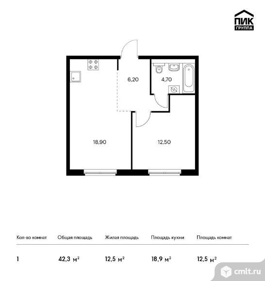1-комнатная квартира 42,3 кв.м. Фото 1.