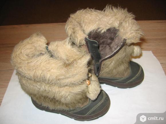 Сапожки зима фирмы Котофей. Фото 1.