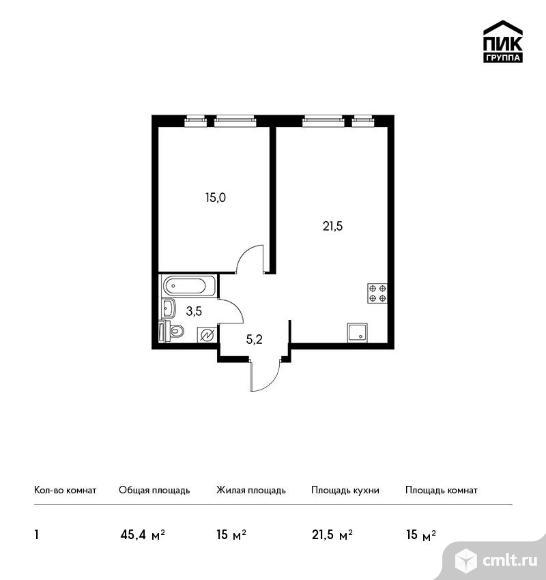 1-комнатная квартира 45,4 кв.м. Фото 1.
