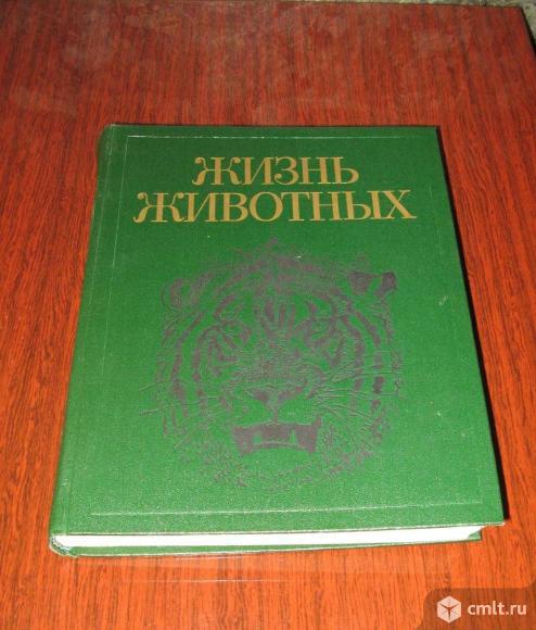 Жизнь животных, в семи томах. Фото 1.