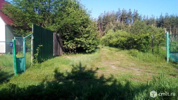 Продам ухоженный участок 9 соток в СНТ Ромашка под Рамонью. Фото 6.
