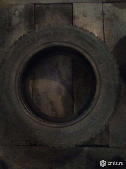 Шины. Фото 2.