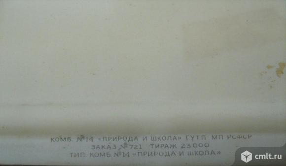 Государственный герб СССР (для актового зала). Фото 4.