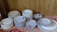 Много разных тарелок