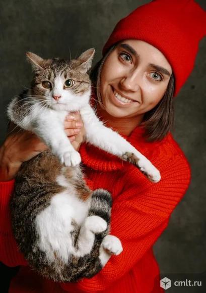 Милая кошечка в добрые руки. Фото 1.