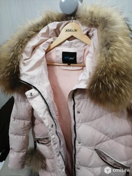Пуховик (куртка зимняя/натуральный наполнитель). Фото 1.