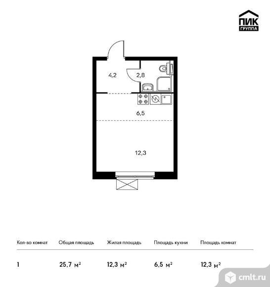 1-комнатная квартира 25,7 кв.м. Фото 1.