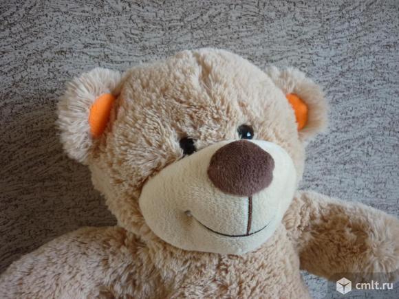 Медвежонок. Фото 6.