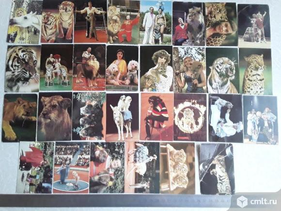 Карманные календари. Цирк СССР. 30 шт.. Фото 1.