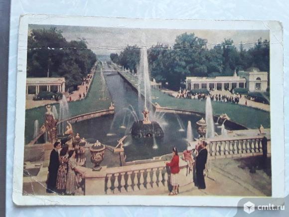 Ленинград. Петродворец. Вид со стороны дворца на большой каскад и канал. 1954г.. Фото 1.