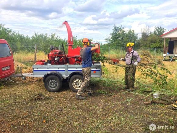 Измельчение веток , мелких деревьев. Фото 1.