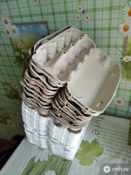 Контейнеры для яиц. Фото 1.