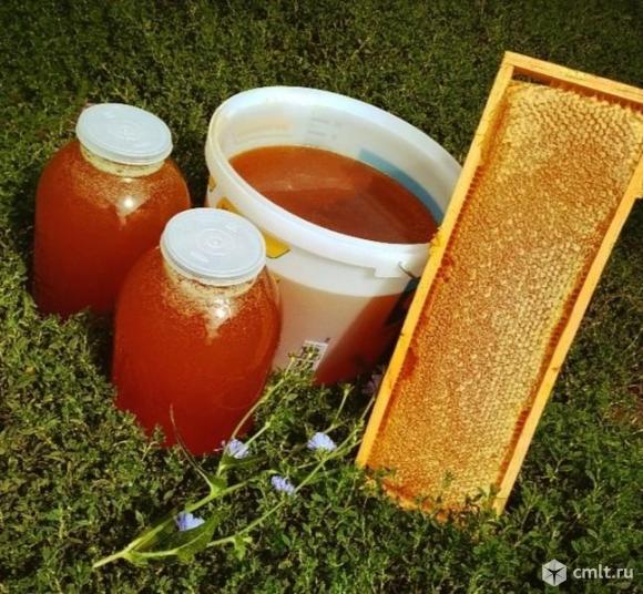 продам цветочный мёд. Фото 1.