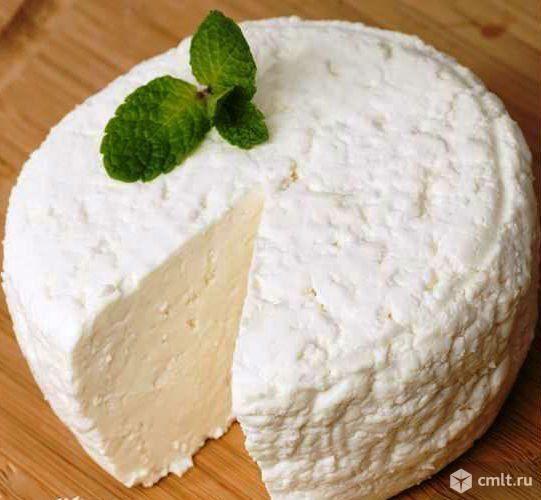 Сыр из цельного козьего молока. Фото 1.