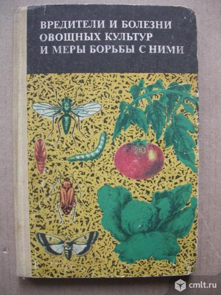 Вредители болезней овощных культур и меры борьбы с ними. Фото 1.