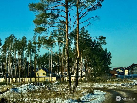 8 соток Медовка Рамонский район. Фото 1.