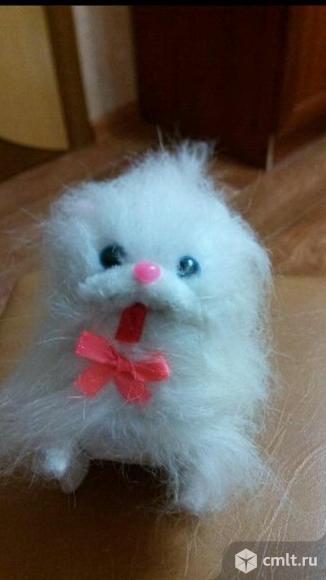 Белая лохматая кошка. Фото 1.