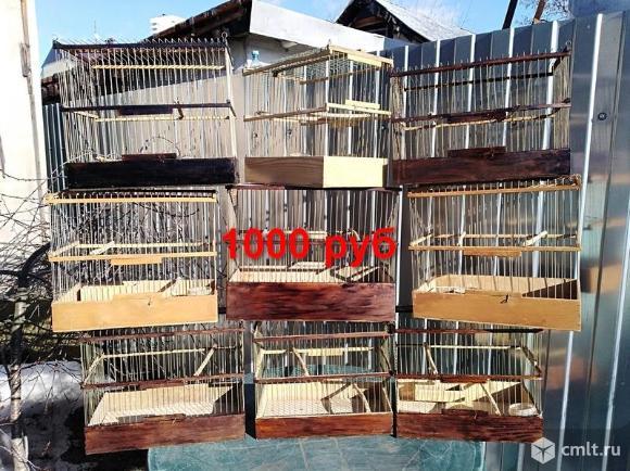 Клетки  для птиц и зимний садок для попугаев.. Фото 5.