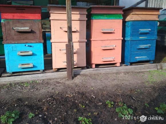 Продам ульи новые и б/у дадан. Фото 1.