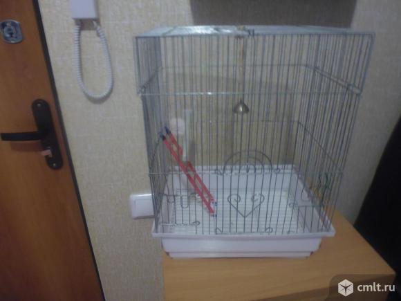 Клетки для попугаев. Фото 1.