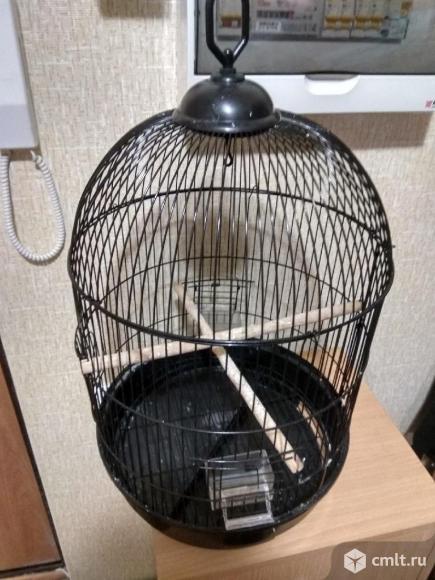Клетки для попугаев. Фото 2.