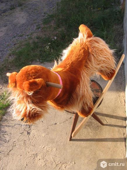 Качалка-собака. Фото 2.