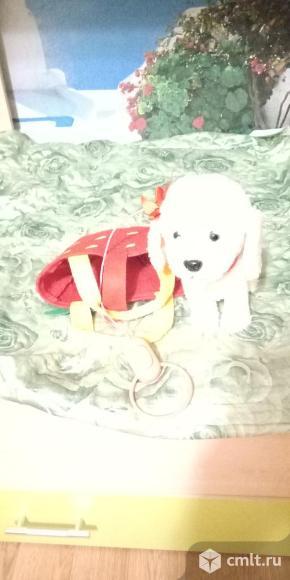 Музыкальная собачка в сумочке и с повадком. Фото 2.