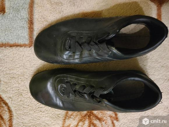 Спортивные кроссовки - туфли ( по стельке 23.5 см ). Фото 1.