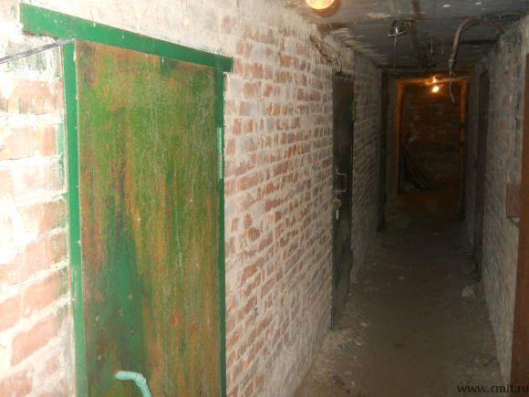 дверь входная в подвал зелёная